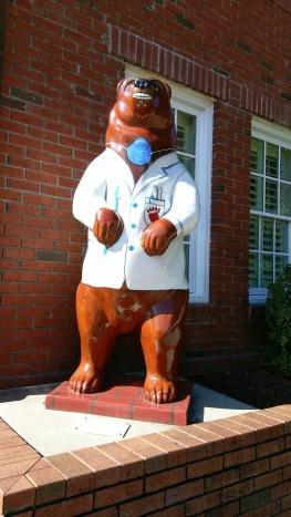 New Bern bear